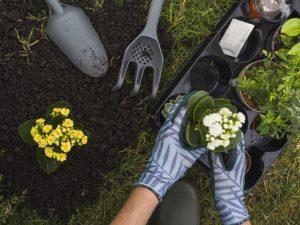 Jardinero las condes